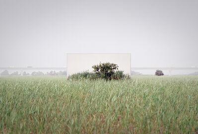 Lee Myoung Ho, 'Tree #19_3', 2021