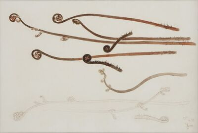 Sugiyama Yasushi, 'Fern', 1955
