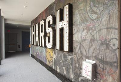 Skylar Fein, 'Harsh', 2009