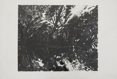 Peter Alexander, 'San Blass II', 1988