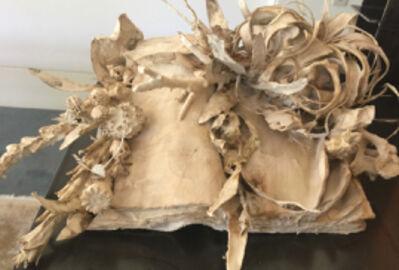 Jody Guralnick, 'Botany Book Volume 2', 2018