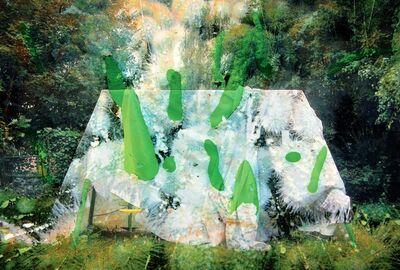 Maya Rochat, 'Invasion', 2014