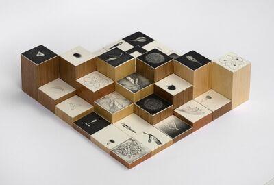 Kika Levy, 'Tempo Progressivo', 2010