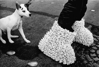 Antoni Miralda, 'Le chien de la générale', 1969