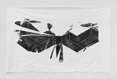 Matt Calderwood, 'Interrupted Projections 1.4', 2014