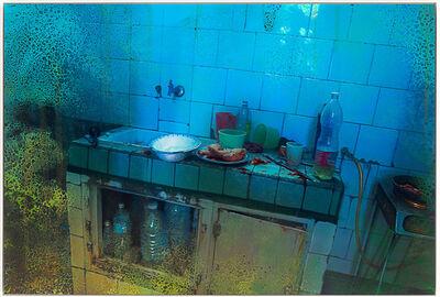Eric Cahan, 'Foster Homes and Garden ', 2016
