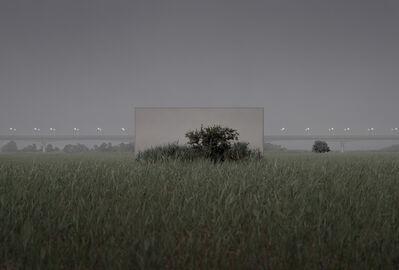 Lee Myoung Ho, 'Tree #19_1', 2021