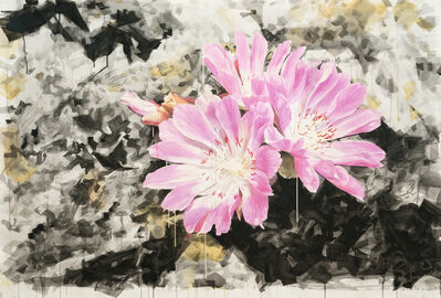 Eric LoPresti, 'Lewisia with Crystal Background', 2016