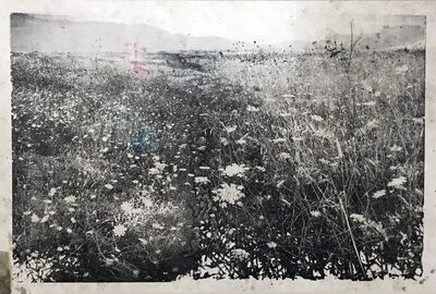Ida Tursic & Wilfried Mille, 'Landscape and few colors ', 2017