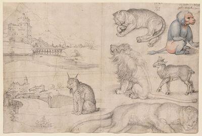 Albrecht Dürer, 'Sketches of Animals and Landscapes ', 1521
