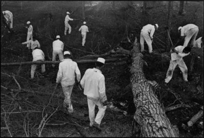 Danny Lyon, 'The Woods at Ellis, Texas, from Conversations with the Dead', 1968