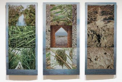 Meridel Rubenstein, 'Eden Again, Southern Iraq Marshes'