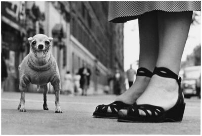 Elliott Erwitt, 'New York City', 1946
