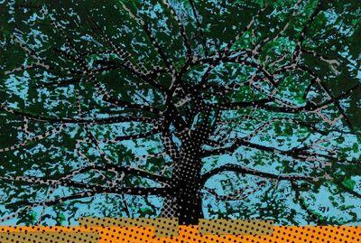 Vincent Michéa, 'Etude pour un arbre 4', 2017