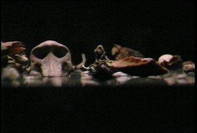 Gary Hill, 'Site Recite (a prologue)', 1989