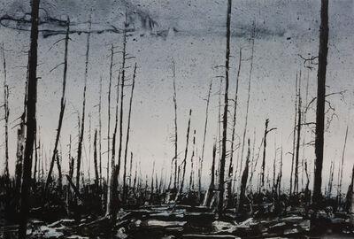 Emma Stibbon, 'Forest Fire', 2017