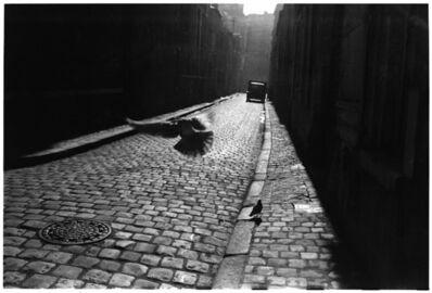 Elliott Erwitt, '3. France. Orleans. (Pigeons in the alley)', 1952