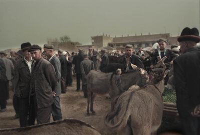 Gabriel Giovanetti, 'Kashgar:The Donkeys', 2000-2013