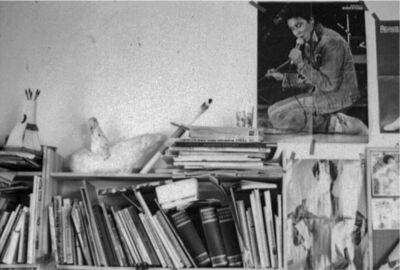 Margherita Spiluttini, 'Welt der Tiere, Nr. 8', 1982/2017