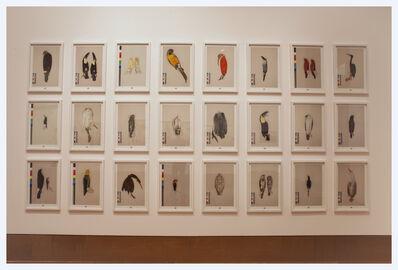 Alberto Baraya, 'Fabula de los pájaros', 2014