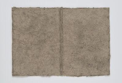 Raquel Rabinovich, 'River Library 395 with Footnotes', 2012-14