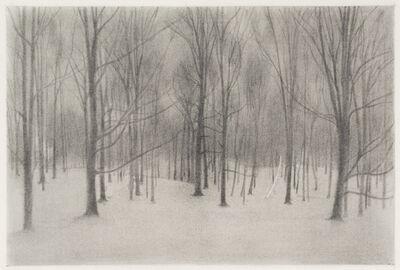 Ron Milewicz, 'Evening of Light', 2017