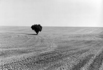 Ingeborg Gerdes, 'Near Ritzville, Adams County, Washington', 1980