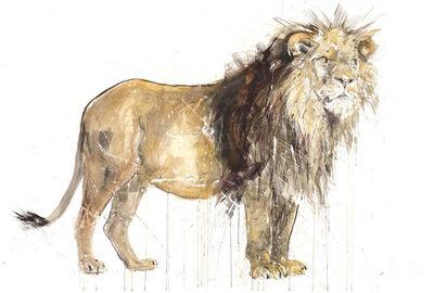Dave White, 'Lion XXL ', 2020