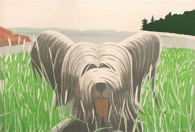 Alex Katz, 'Dog at Ducktrap', 1976