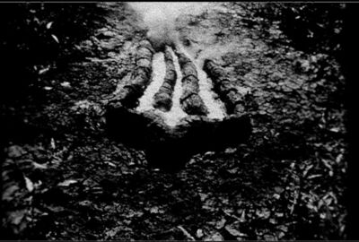 Ana Mendieta, 'Still from Untitled (Gunpowder Silueta Series)', 1981