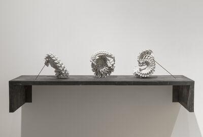 Motohiko Odani, 'New Born (GLM_A01-03)', 2016