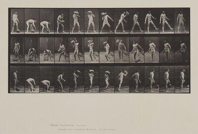 Eadweard Muybridge, 'Animal Locomotion, Plate 317', 1887