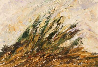 Hugh Mackenzie, 'Grove of Trees', 2016