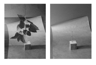 Mikko Rikala, 'A bit of Branch (Passage Through Various Materials)', 2015