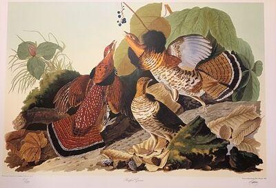 John James Audubon, 'Ruffled Grouse - Publisher's Proof  (Plate 41) Signed, Numbered ', 1992