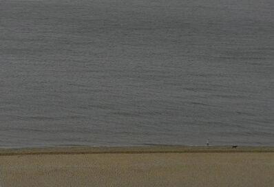 Tomio Seike, 'Overlook, 1-3433, Brighton', May 2012