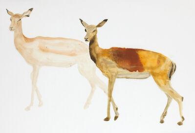 Niklas Eneblom, 'Animal', 2018