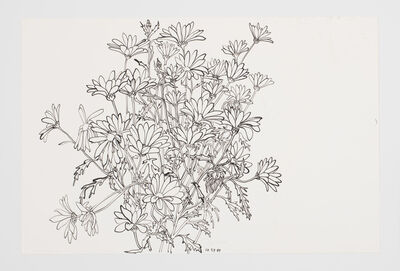 Ruth Asawa, 'Untitled (PF.150, Daisies)', 1989