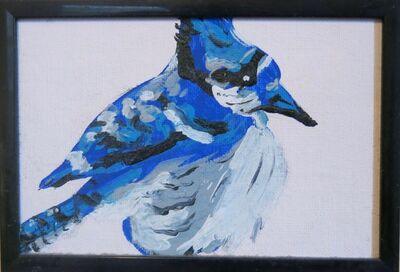 Susan Spangenberg, 'Bonkers Blue Jay', 2020