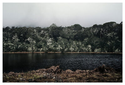 Bernhard Quade, 'Lewis Pass Forest | South Island | New Zealand', 2015