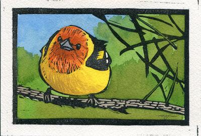 Sherrie York, 'Bitty Bird/Western Tanager'