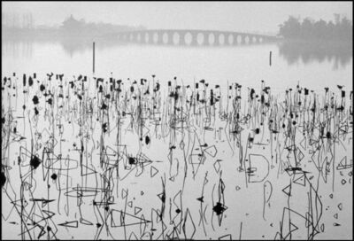 René Burri, 'Former Summer Palace. Dead lotus flowers on the Kunming Lake. Beijing, China. ', 1964