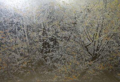 Masayoshi Nojo, 'Mirage#44', 2019