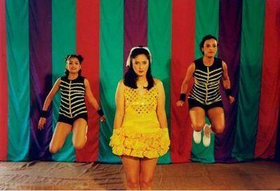 Pushpamala N., 'The Native Types - Circus', 2006