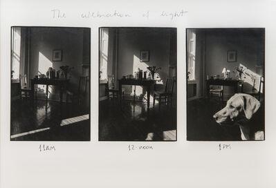 Marcelo Zocchio, 'The celebration of light', 1991