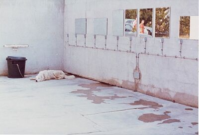 Luigi Ghirri, 'L'Île Rousse, from the series Kodachrome', 1976