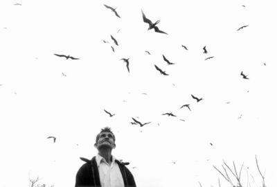 Graciela Iturbide, 'Señor de los Pájaros, Nayarit, Mexico', 1984