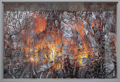 Matthew Picton, 'The Fall of Stars, Durer Detail, Oregon Forest Fire', 2019