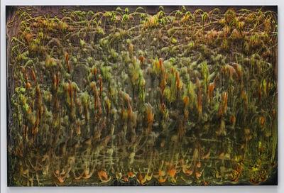 Marta Kucsora, 'Untitled 07', 2020