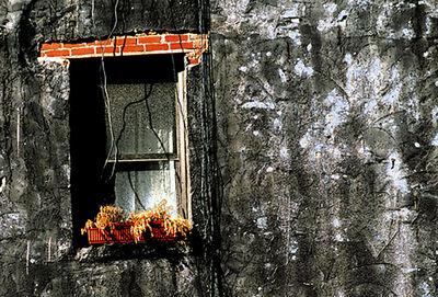 Douglas Nesbitt, 'Window', ca. 2010